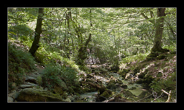 Photo: Araia - Zirauntza erreka (HDR)