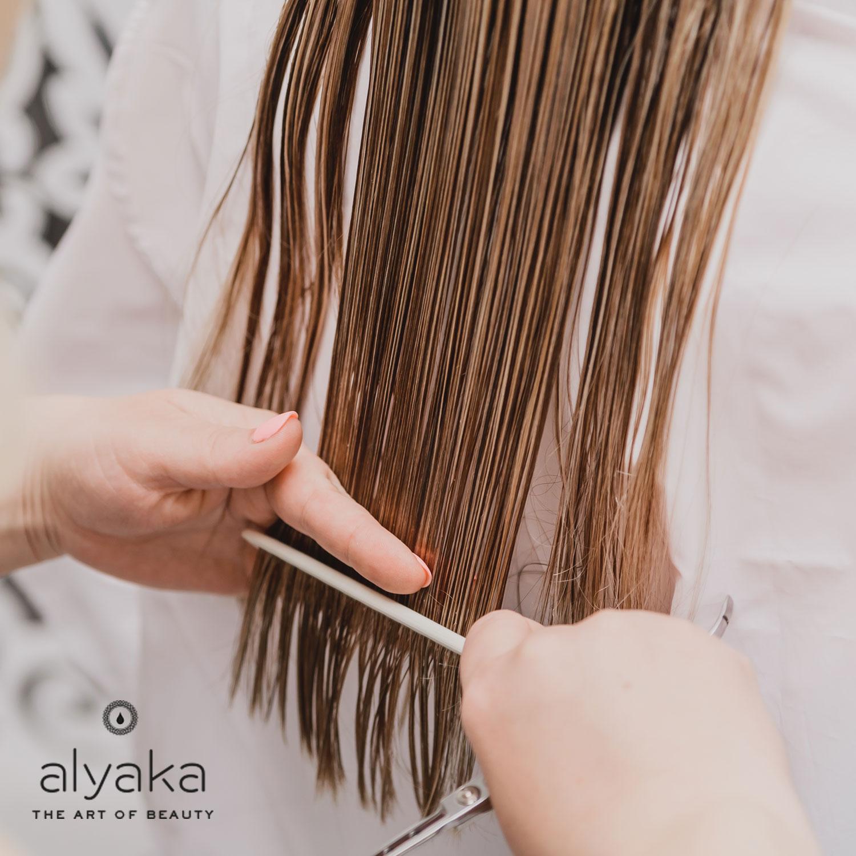 Regular Haircut for Over Treated Hair