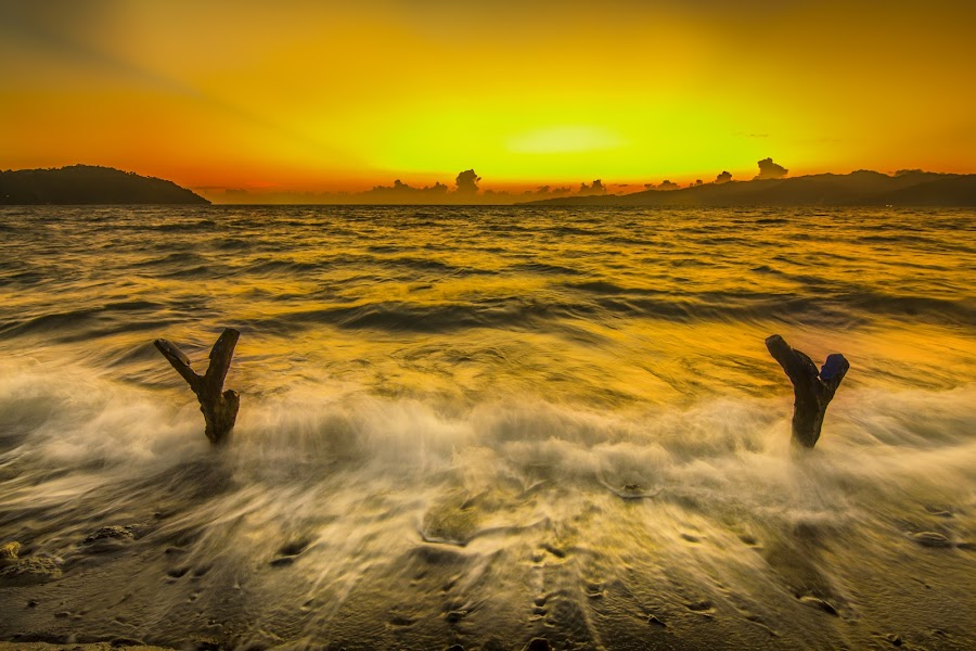 :::the golden motion::: by Nandy Rery - Landscapes Waterscapes (  )