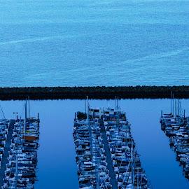 Shilshole Bay Marina by Bob MacDonald - Transportation Boats ( sailboats, sailboat, breakwater, boats, shilshole, water, seawall, boat, morning, marina, pier, power boat, blue, docks, piers, ballard, seattle, bay, dock, evening,  )