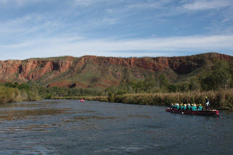 Photo: We approach the awesome Ord cliffs – magnificent!  photo by: Ave Gassman of the Kununurra Dragon Boat Club
