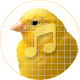 Download Canary bird sounds ~ Sboard.pro For PC Windows and Mac