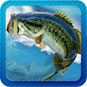 Fishing Fever icon