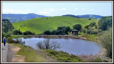 Photo: Pond in Helen Putnam Regional Park, near Petaluma CA