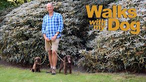 Walks with My Dog thumbnail
