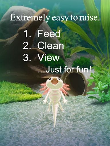 Axolotl Pet 1.5 Windows u7528 5