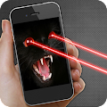 Laser Cat Joke