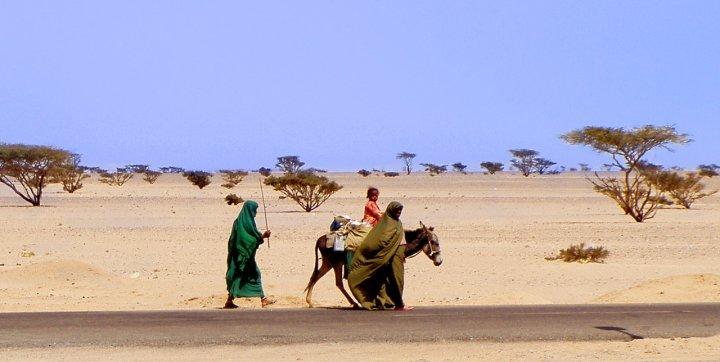 Fuga in Egitto di Marzia Borgognoni