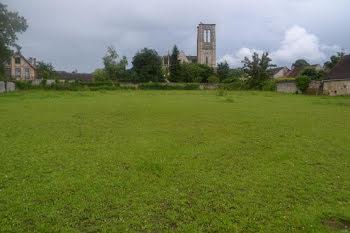 terrain à La Chapelle-la-Reine (77)