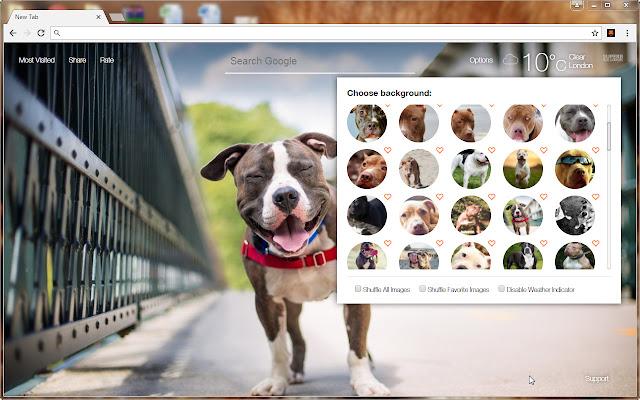 Pitbull Dogs Wallpaper Custom Pitbulls NewTab