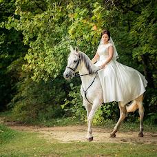 Wedding photographer Yuliya Sveshnikova (Juls93). Photo of 07.11.2016