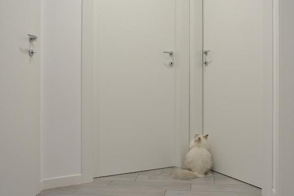 Hai detto porta bianca? di Luca Mandelli