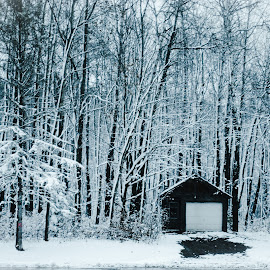 First Snow of the Season by Abbie Goyette - Landscapes Weather ( #seasons, #landscapes, #snow, #winter, #nature,  )