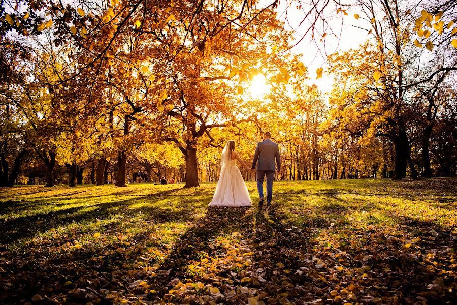 Wedding photographer Milan Lazic (wsphotography). Photo of 06.12.2015