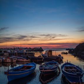 fishermans boats by Frans Scherpenisse - Landscapes Sunsets & Sunrises ( fish, sea, sunrise, boats harbour, italy )