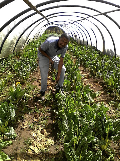 Agriculture entrepreneur Nelson Tsepa is the founder of the Dihoai Co-operative in Westbury, west of Joburg.