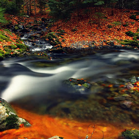 fire and water by Malinov Photography - Landscapes Waterscapes ( water, autumn, fall, blur, slow, flow, motion, fire, river )