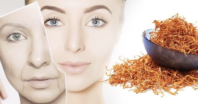 anti aging image and cordyceps powder