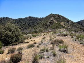 Photo: View southeast up the ridge I'm descending