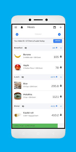 Easy Diet screenshot 2