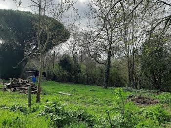 terrain à Talmont-Saint-Hilaire (85)