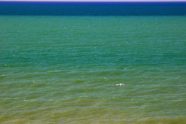 unmare che sembra oceano di benny48