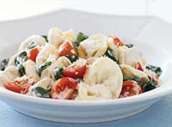 Cheese And Spinach Tortellini Pasta Salad Recipe