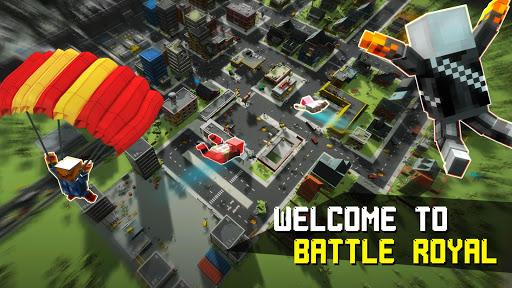 Pixel Fury: Battle Royale in 3D 8.5 screenshots 1