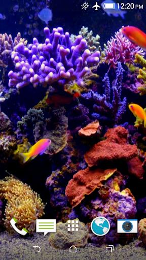 Aquarium Video 3D Wallpaper