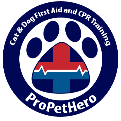 Cat and Dog First Aid and CPR Training