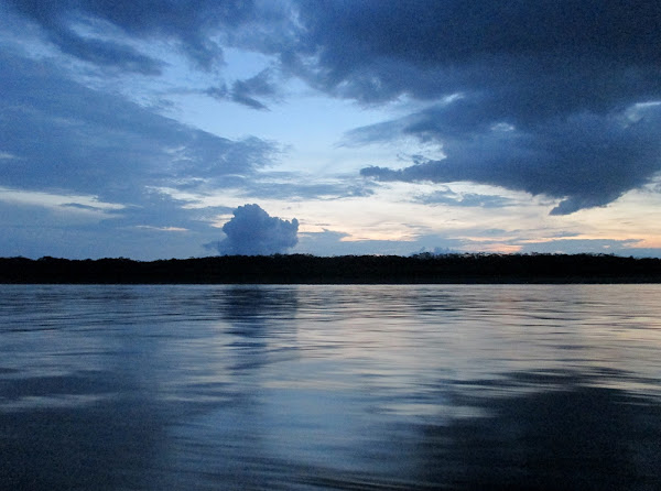 Amazon River Blue