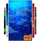 3D Aquarium Video Wallpaper