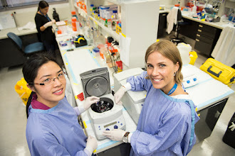 Photo: L-R: Miss Denise Doan (Honours student) with Dr Sara Rhost (Research Officer) Lab link: http://www.acbd.monash.org/research/stem-cell.html