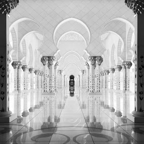 by Steve Struttmann - Black & White Buildings & Architecture ( emirates, reflection, vacation, sheikh, black and white, mosque, white, zayed, architecture, travel )