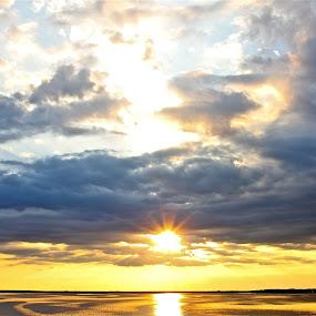 Sunset Oklokonee Bay Florida by Susannah Lord - Uncategorized All Uncategorized ( blue clouds, sunset, yellow, sun, oklokonee bay,  )