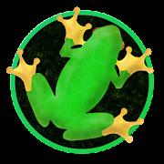 Frogar.io: Frog Eater IO Game