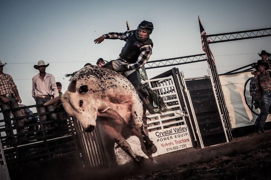by John Weaver - Sports & Fitness Rodeo/Bull Riding