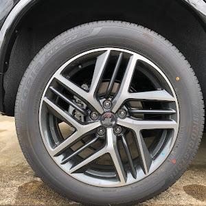 エクストレイル T32 AUTECH 4WD・2019年のカスタム事例画像 ゆう222さんの2019年10月09日08:03の投稿