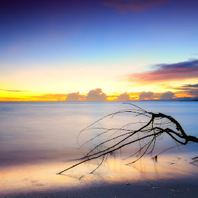 Dawn by Darmal Ali - Landscapes Waterscapes