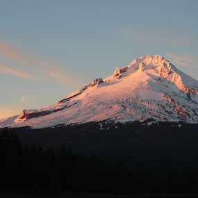 Mt. Hood by Maureen Rueffer - Landscapes Mountains & Hills