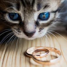 Wedding photographer Yuriy Evgrafov (evgrafovyiru). Photo of 11.02.2018