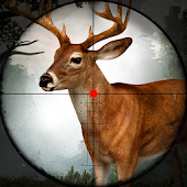 Sniper Deer Hunter 2017 🦌 Jungle Hunting Game 3D