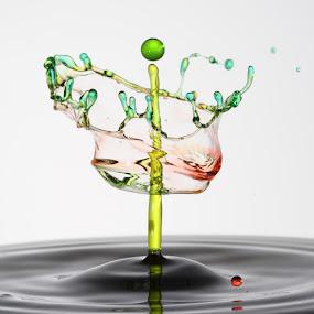 The crown by Salahudin Damar Jaya - Abstract Water Drops & Splashes ( splash, droplet, hsp )