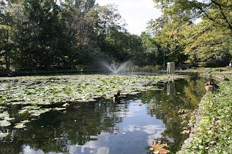 Photo: 大野池