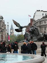 Photo: Londýn - pohled z Trafalgarského náměstí na Big Ben http://www.turistika.cz/cestopisy/londyn-london-eye-trafalgar-square-palace-of-westminster-big-ben-piccadilly-circus-eurotunel