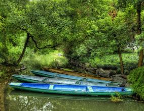 Photo: Boats under the garden trees....