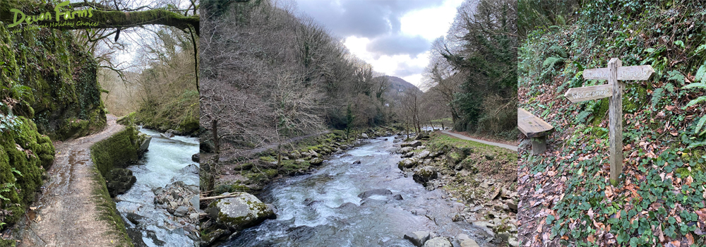 Watersmeet in North Devon has an excellent range of walking routes, perfect for all abilities while on holiday in Devon.