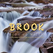 Flowing Water: Brook (Nature Sounds for Relaxation, Meditation, Healing & Sleep)
