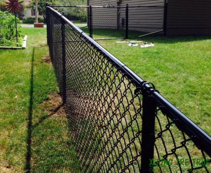 Hàng Rào Lưới B40 - Những ưu điểm Nổi Bật Của Hàng Rào Lưới B40 - Xưởng Tre  Trúc