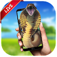 Snake Live Wallpaper apk